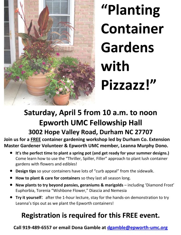 """""""Potting Up a Planters with Pizzazz"""""""