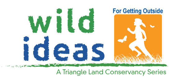 Wild-Ideas-for-Go-Logo-web