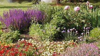 Flower garden1